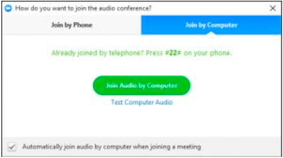 Join Audio via Computer