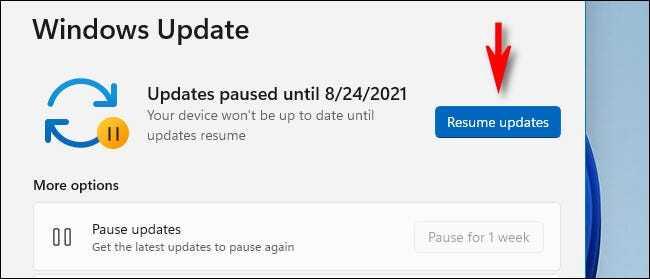 4. Cara Pause Windows 11 Update