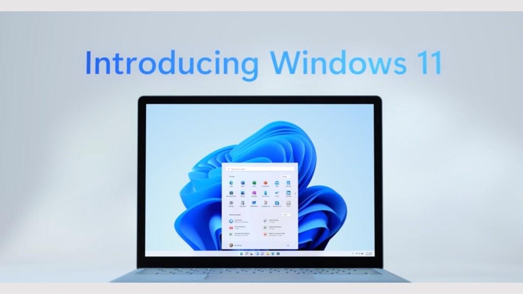Cara Pause Windows 11 Update